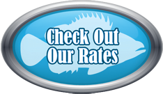 Check out rates