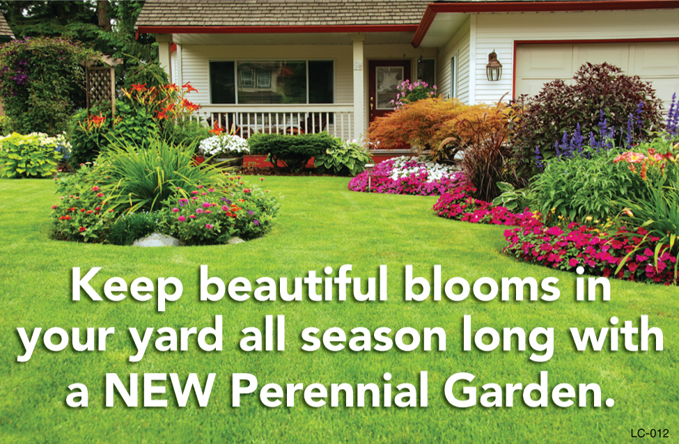 Keep Beautiful Blooms In Your Yard All Season Long