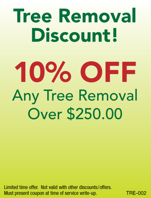 10% Off Any Tree Removal Over $250