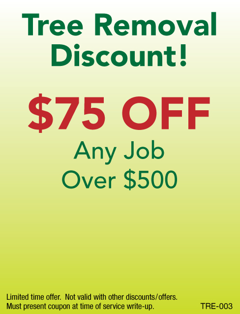 $75 Off Tree Removal Job Over $500