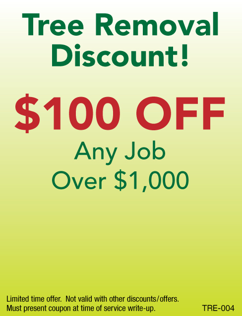 $100 Off Tree Removal Job Over $1000