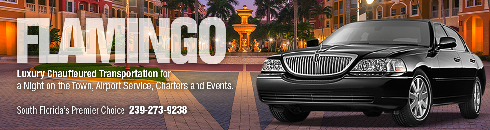 Flamingo Transportation and Limo Service: Naples, Florida