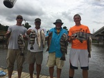 Redfish Charleston Blackdrum Charter Fishing