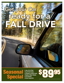 Seasonal fall special 89.95