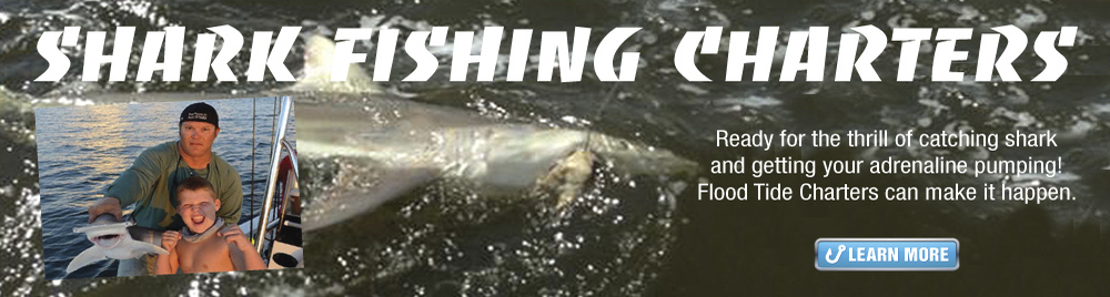 Shark Fishing Charter Charleston South Carolina
